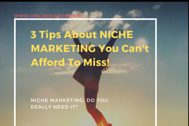 NICHE MARKETING: Do You Really Need It? It Will Help You Decide!